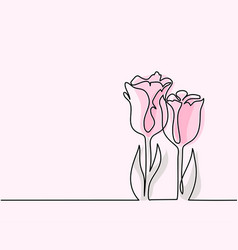 drawing of beautiful tulips flower vector image vector image