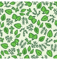 Green hergbs seamless pattern vector
