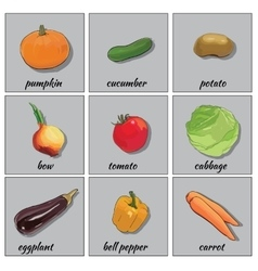 hand drawn vegetables icon set for web flat icons vector image