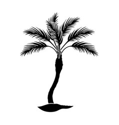 palm beach treesummer rest single icon in black vector image vector image