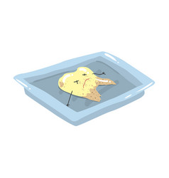 Funny extracted dead tooth lying on a steel tray vector