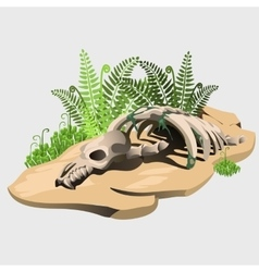 Fossil skeleton of an ancient animal on stone vector