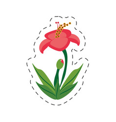 cartoon hibiscus flower image vector image