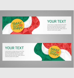 Cinco de mayo poster greeting card mexican holiday vector