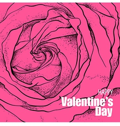Valentines day design with rose flower vector image vector image