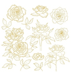 Set of one-colored outlined roses vector
