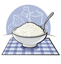 Cottage cheese vector
