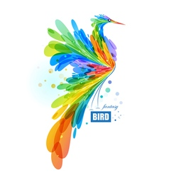 Colorful fantasy bird vector image