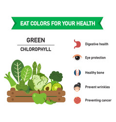 eat colors for your health green food vector image vector image