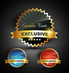 excluxive label vector image