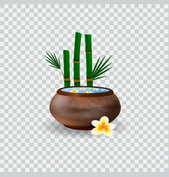 Spa bowl filled with water and plumeria flowers vector