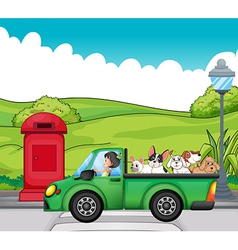 A green vehicle with dogs at the back vector