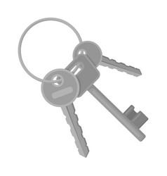 a bunch of keys from the cells in the prison keys vector image