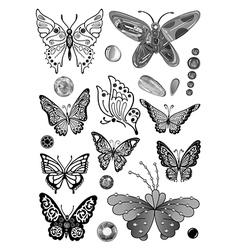 Monochrome butterfly set vector image