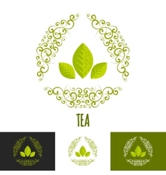 Green tea branding concept vector