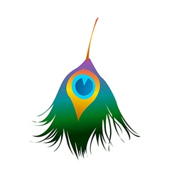 Icon plumage vector