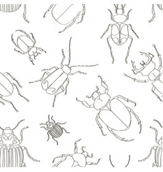 set of beetle pattern vector image