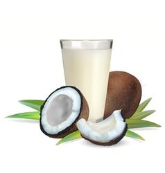 coconut vector image