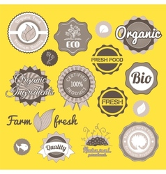 Collection green labels badges and icons vector image