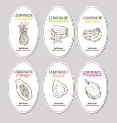 Hand drawn refreshing lemonade labels set vector