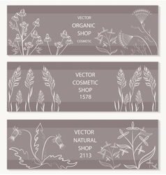 Floral botanical decorative banner vector