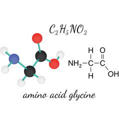 C2H5NO2 glycine amino acid molecule vector image