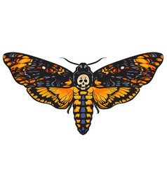 Death head hawkmoth vector