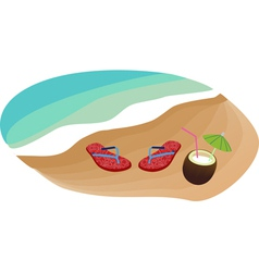 flip flops and coconut vector image vector image