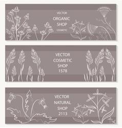 Floral botanical decorative banner vector