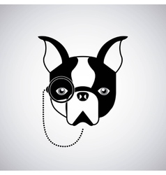 french bulldog design vector image vector image
