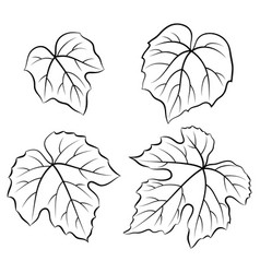 Grape leaves pictograms vector