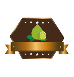 fresh fruit product seal vector image