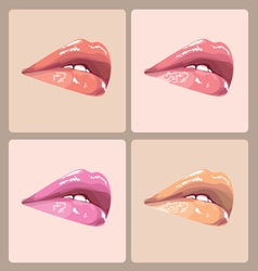 Make-up lips vector image vector image
