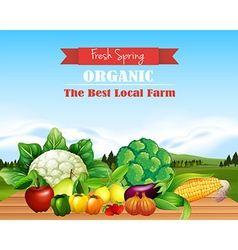 Poster design with fresh fruits and vegetables vector image vector image