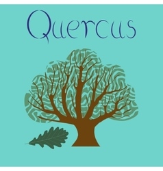 Flat stylish background plant quercus vector