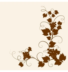 Grape vine vector image vector image