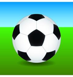 Soccer ball on field vector image