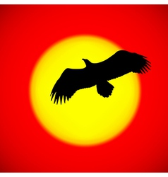 Silhouette of an eagle flying in front of the sett vector