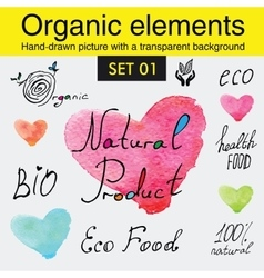 Organic elements and raw food diet designs vector