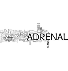 Adrenal fatigue and how to beat it text word vector
