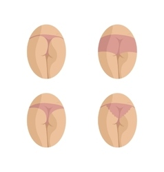 Types of womens panties vector image