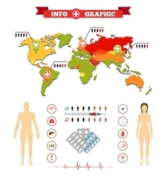 Medical anatomy women infographics and additional vector image