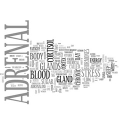 Adrenal fatigue text word cloud concept vector