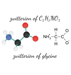 C2H5NO2 zwitterion of glycine amino acid molecule vector image vector image