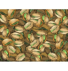 Hand drawn pistachios texture vector