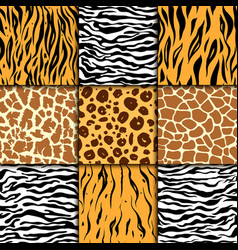 Seamless pattern with cheetah skin vector