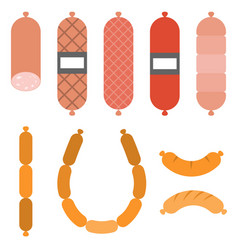 Various sausages vector