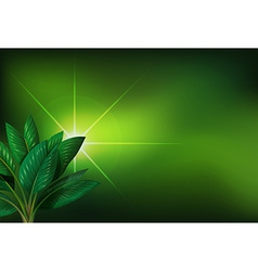 A green background with a plant vector