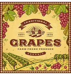 Vintage grapes label vector image
