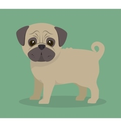 Cute dog design vector